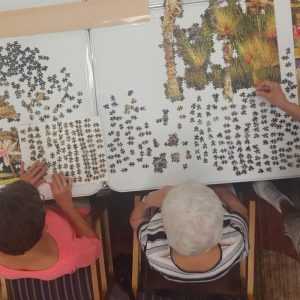 Jigsaw puzzle solving still under way - Your Valley